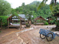 Thai village in survey area