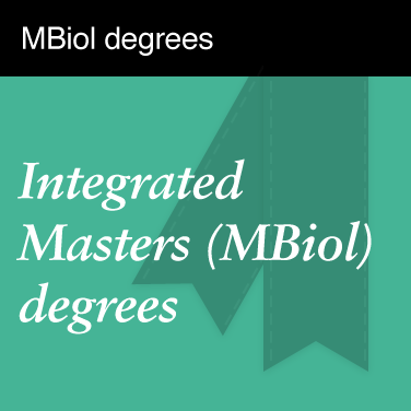MBiol degrees