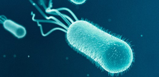 Antibiotic resistance could help find drugs for some of the most intractable diseases