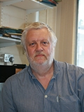 Photo of Prof Paul Millner