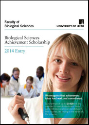 Scholarship flyer cover